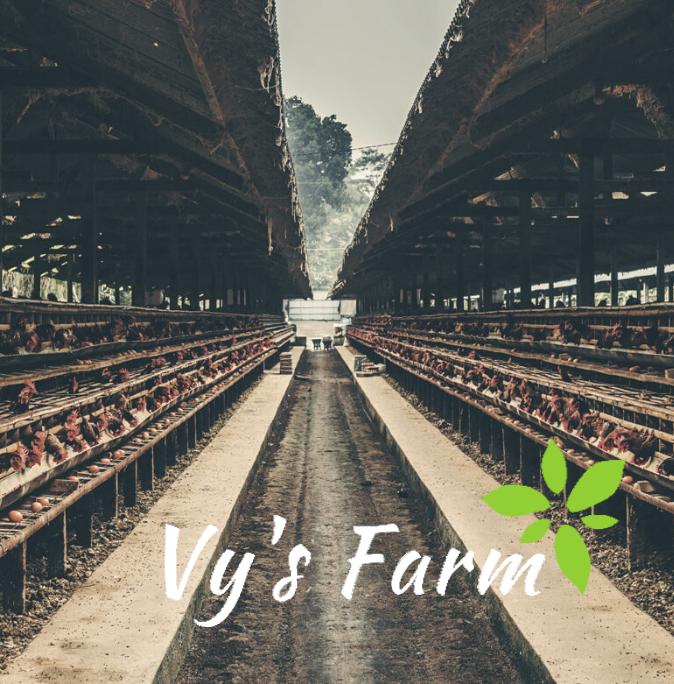 Vy Farm
